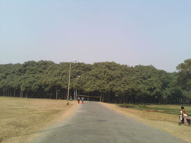 Botanics4