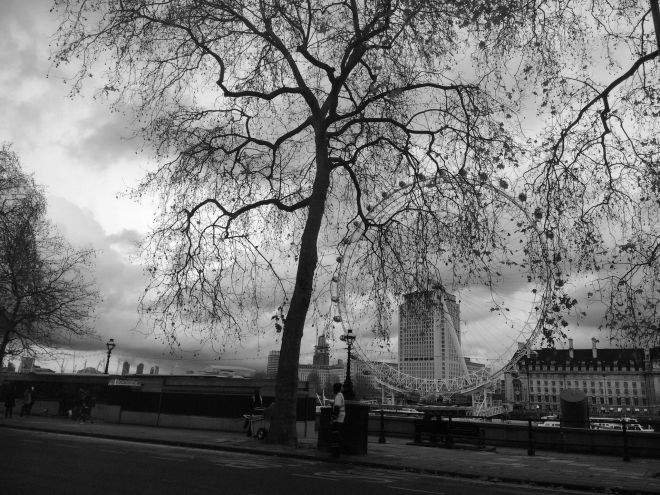 London tree BW.jpeg