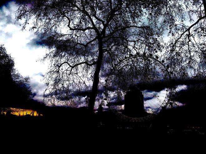 London tree contrast