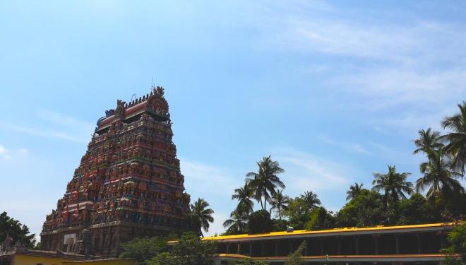 Gopuram palm