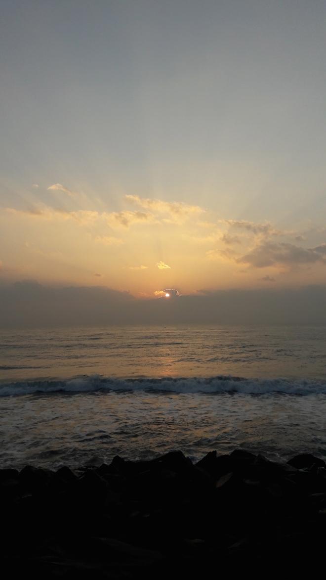 Pondy sun