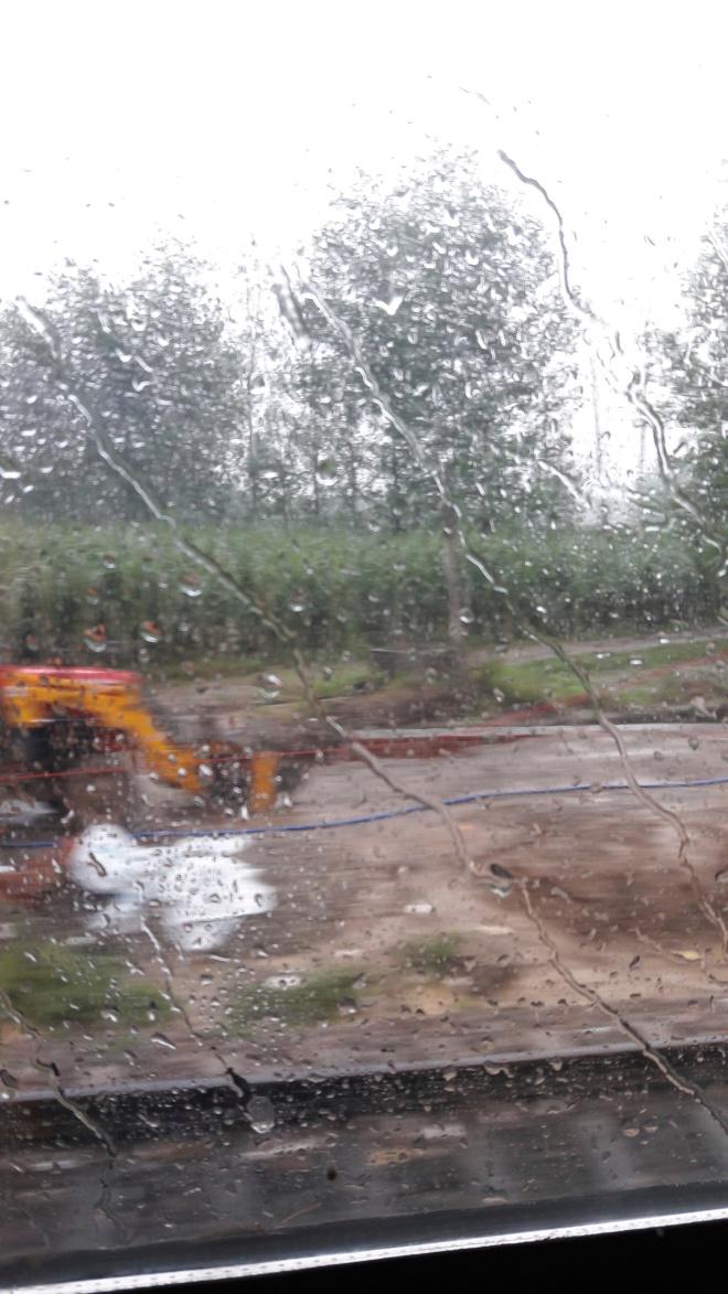 Train rain